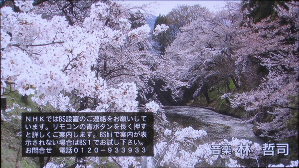 IMG_1364.jpg