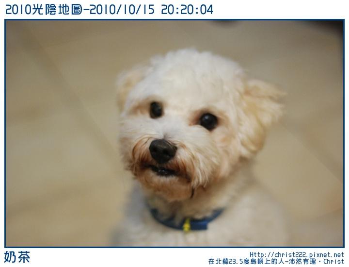 20101015-202004-001.JPG