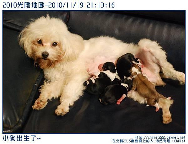 20101119-211316-001.JPG