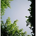 Vivitar0030026.jpg