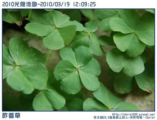 20100319-120925-001.JPG