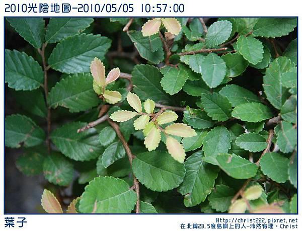 20100505-105700-001.JPG