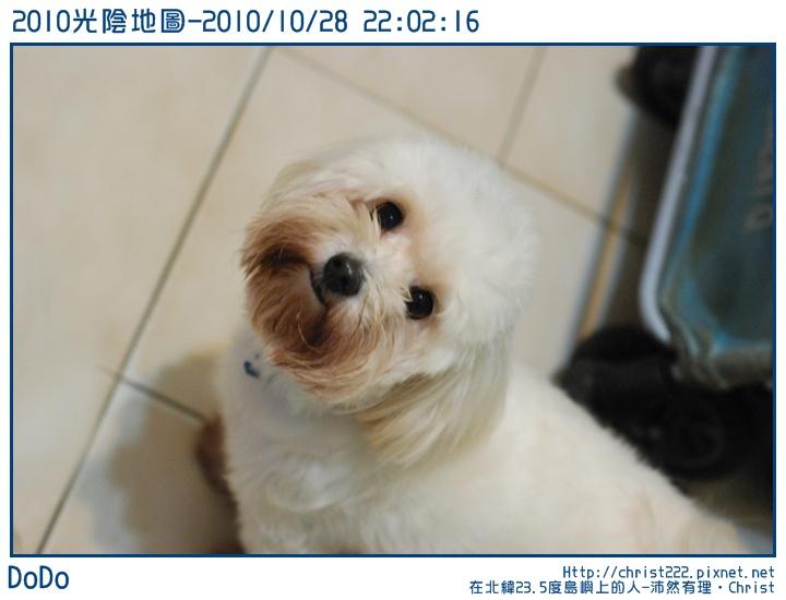 20101028-220216-001.JPG