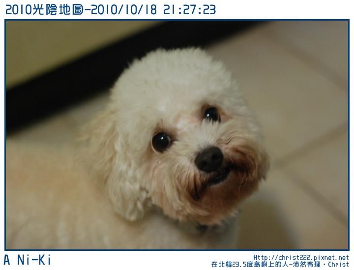20101018-212723-001.JPG