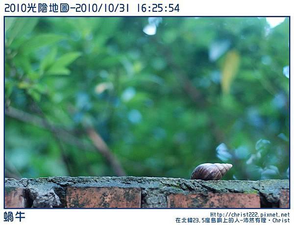 20101031-162554-001.JPG