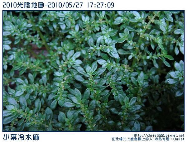 20100527-172709-001.JPG