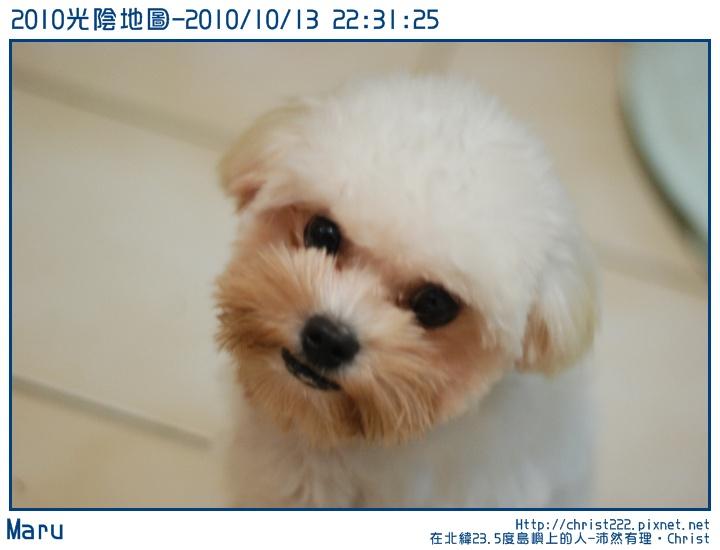 20101013-223125-001.JPG