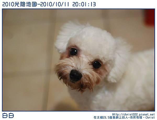 20101011-200113-001.JPG