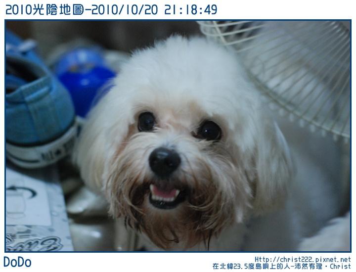 20101020-211849-001.JPG