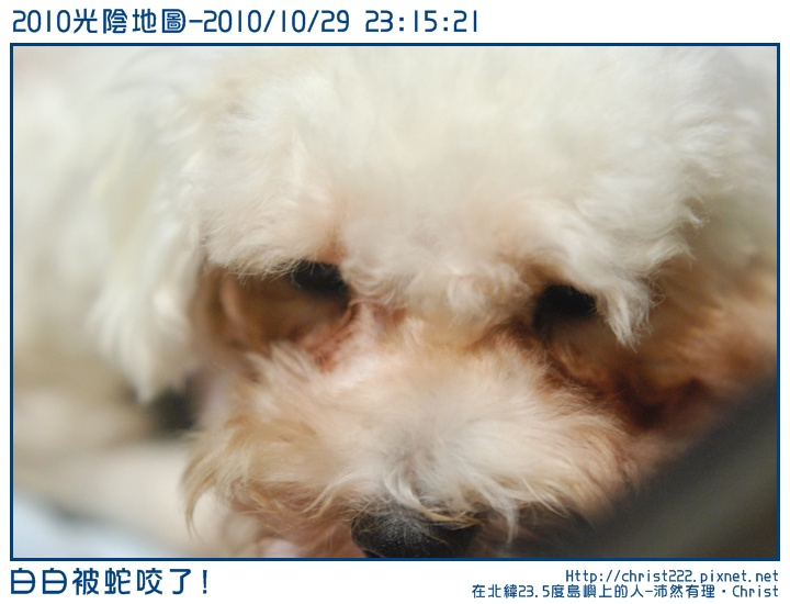 20101029-231521-001.JPG