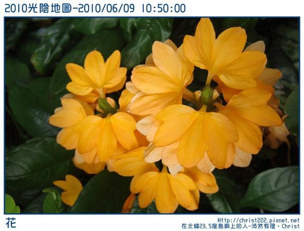 20100609-105000-001.JPG