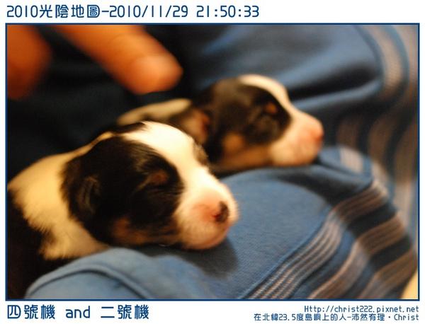 20101129-215033-001.JPG