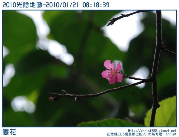 20100121-081839-001.JPG