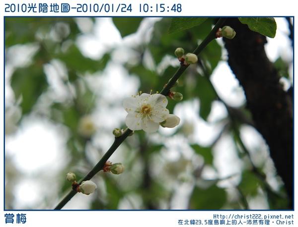 20100124-101548-001.JPG