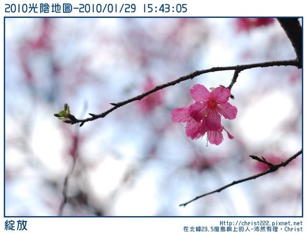 20100129-154305-001.JPG