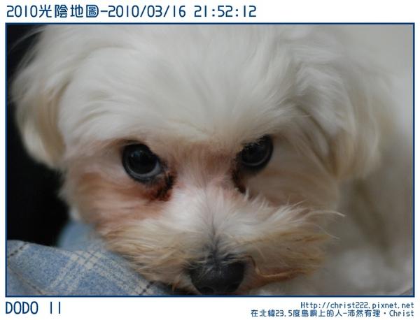 20100316-215212-001.JPG