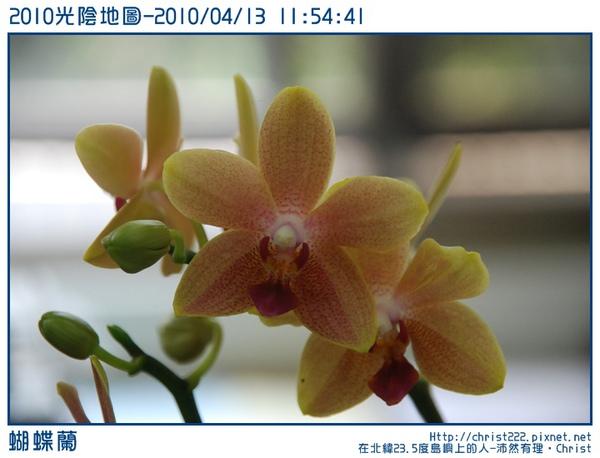 20100413-115441-001.JPG