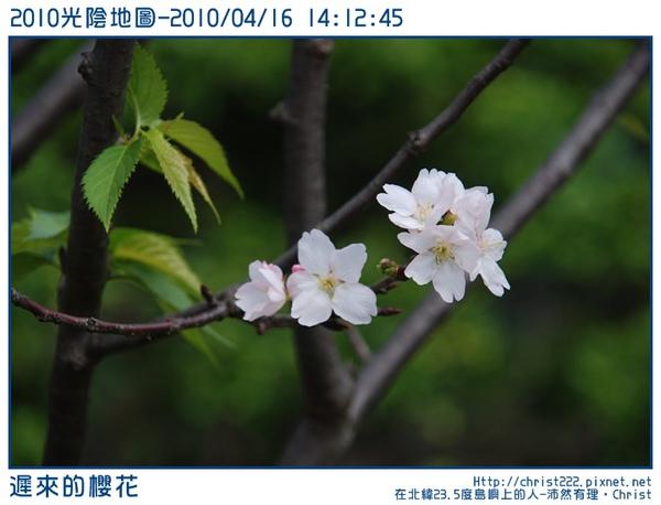 20100416-141245-001.JPG