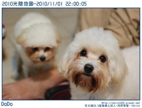 20101101-220005-001.JPG