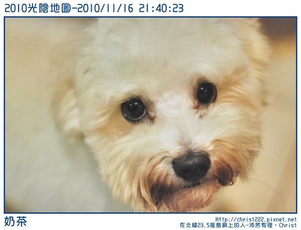 20101116-214023-001.JPG