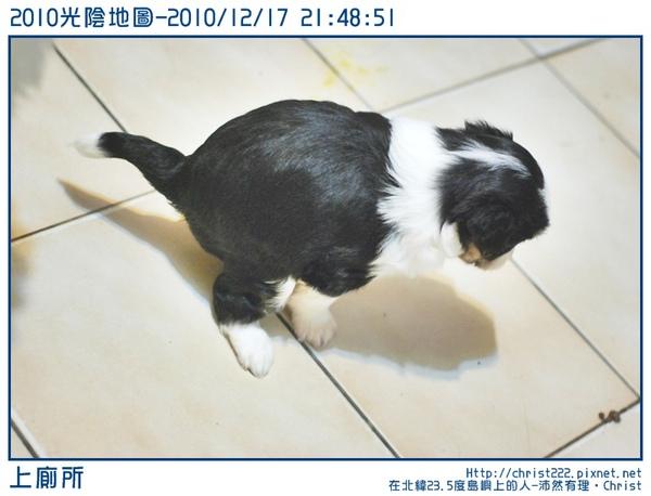 20101217-214851-001.JPG