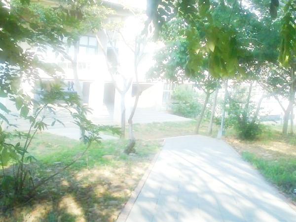 Photo_0330.jpg