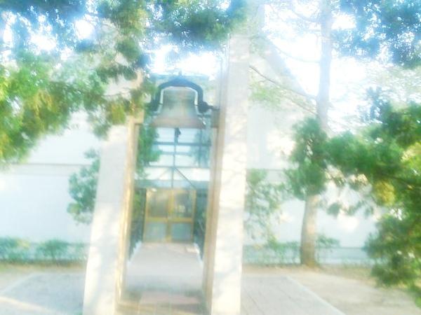 Photo_0380.jpg