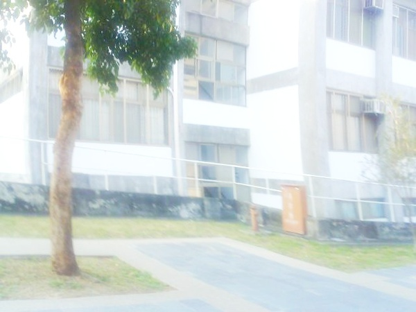 Photo_0388.jpg