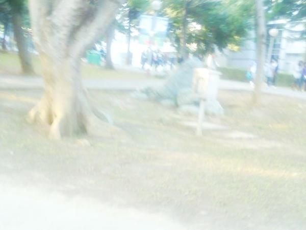 Photo_0394.jpg