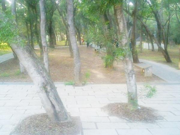 Photo_0415.jpg