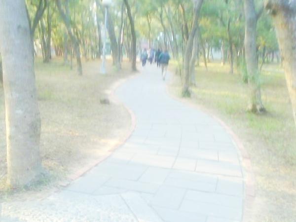 Photo_0418.jpg
