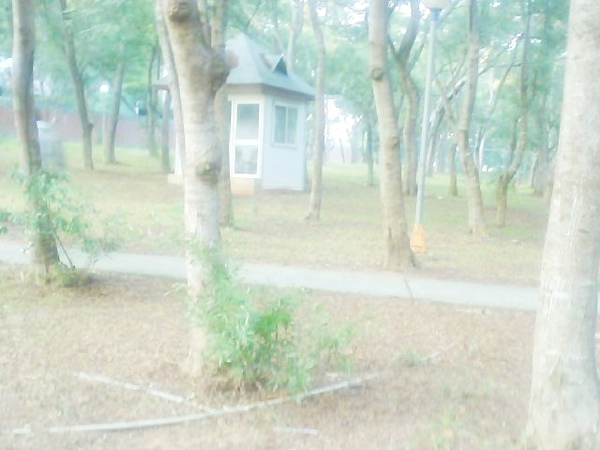 Photo_0419.jpg