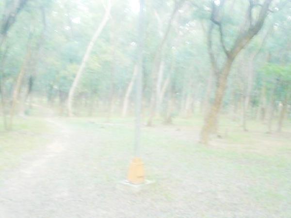 Photo_0422.jpg
