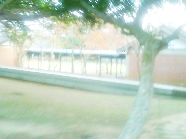 Photo_0428.jpg