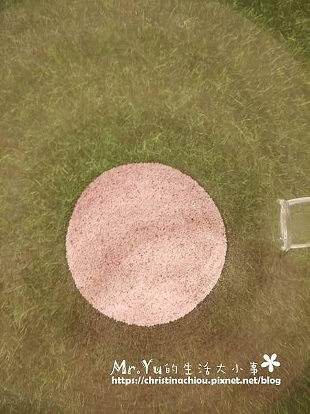 莓洛纖 (12).jpg