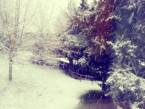 20121205_161526_snow~