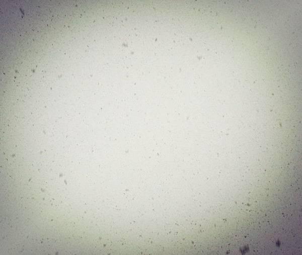 20121205_161542_snowflakes