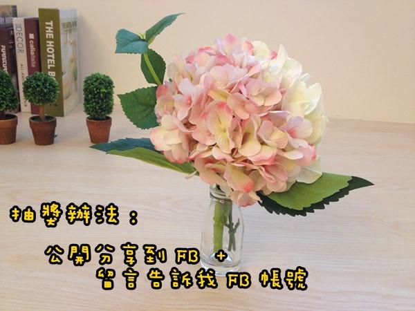 IMG_8504
