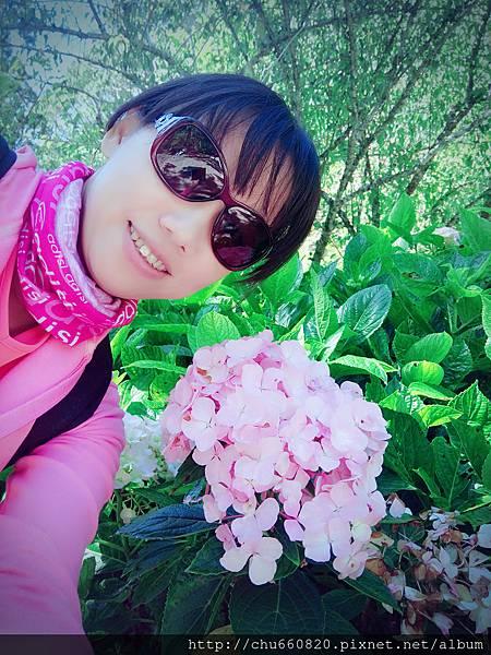 SelfieCity_20160723191403_org.jpg