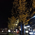 IMG_20171111_000952.jpg