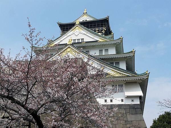 japan-1719950_960_720.jpg