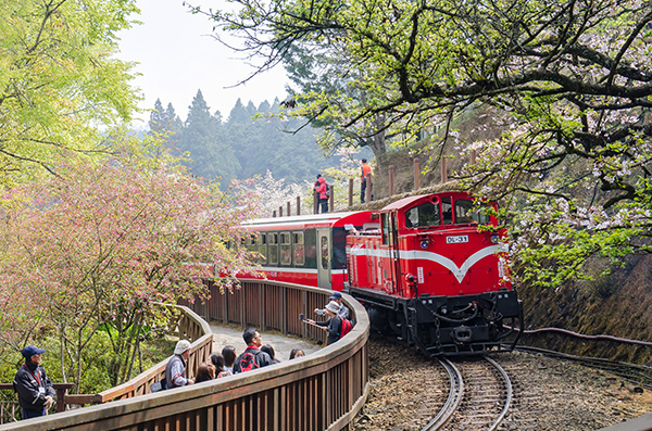 嘉義-阿里山小火車.jpg