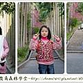 2013_0128奧爾森林學堂07