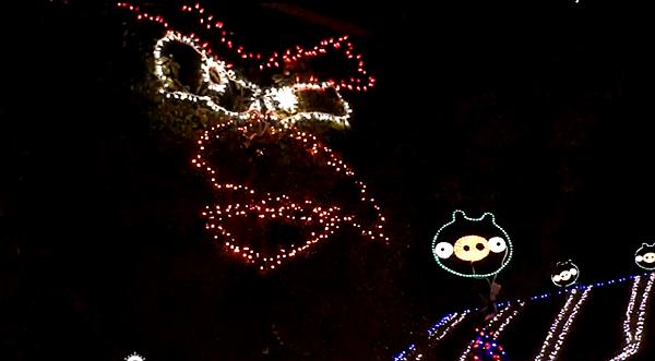 笨豬不要來(Angry Birds Christmas Light Game).png