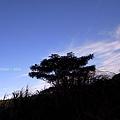 窗外有藍天
