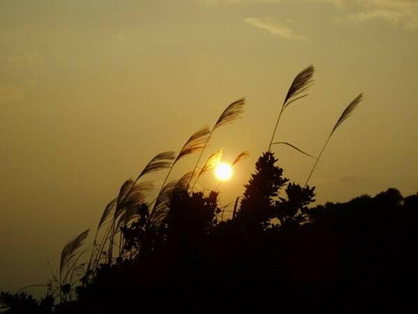 夕陽西下...陽明的最後巡禮也悄悄告終