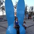 又見可愛小兔子