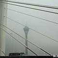 霧茫茫的天