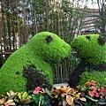 有趣的熊貓造景