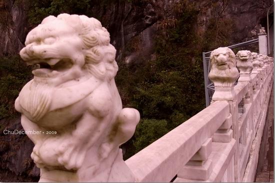 橋上的獅子每隻都不太一樣喔